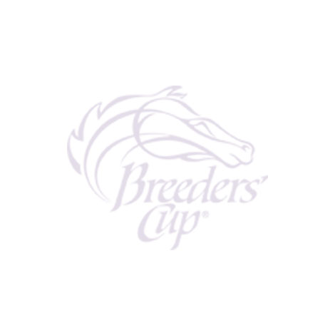 2019 Breeders' Cup Event Logo Keychain